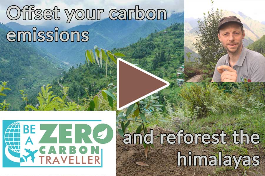 Offset your carbon emissions and reforest the Himalayas, Tirthan valley
