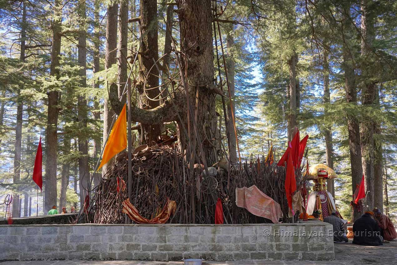 Tirthan valley - Hike to the sacred trees