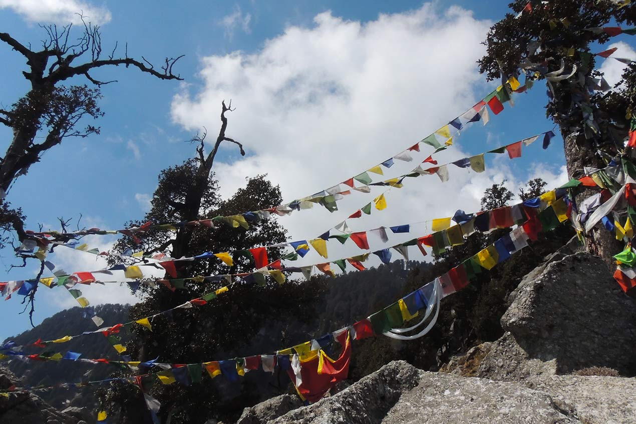 Picture of Dharamshala Mcleodganj