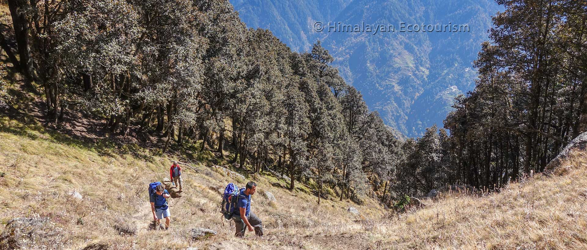 Ookhal trek, Great Himalayan National Park GHNP