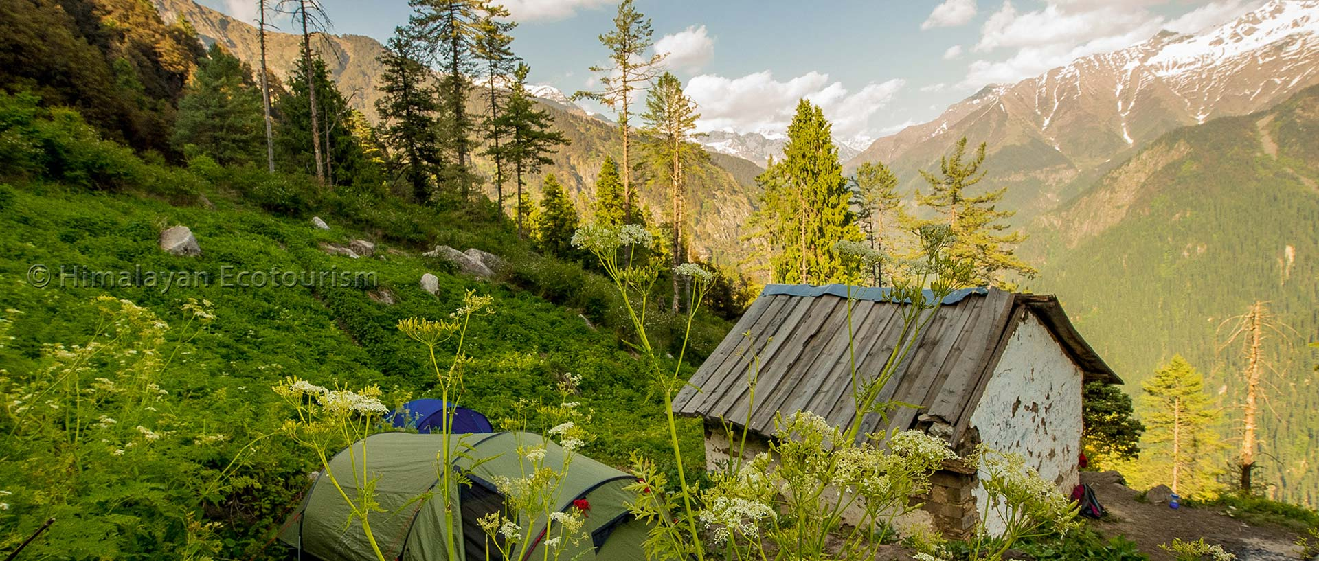Shilt trek in the Great Himalayan National Park GHNP - The camp site