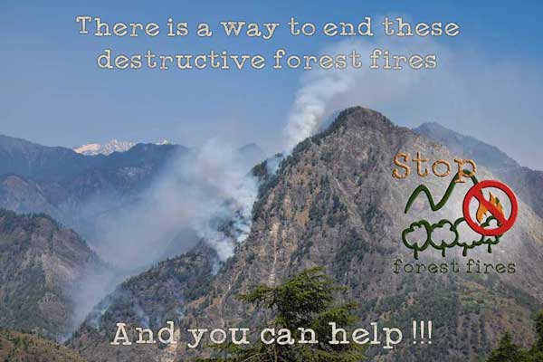 Our efforts to cease the intentional forest fires in the Kullu valley