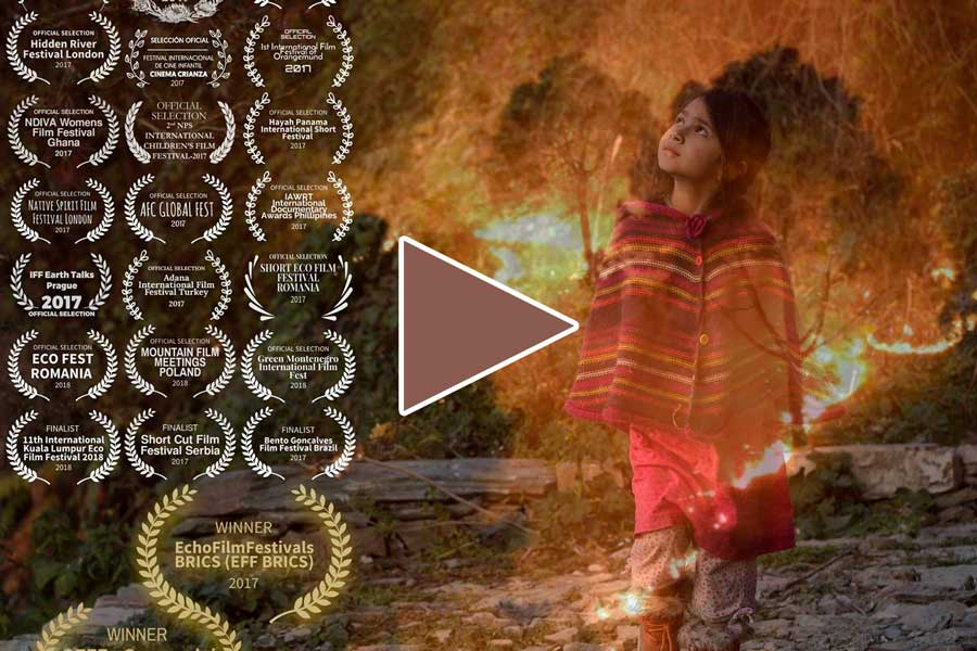 Our documentary to create a community movement against forest fires