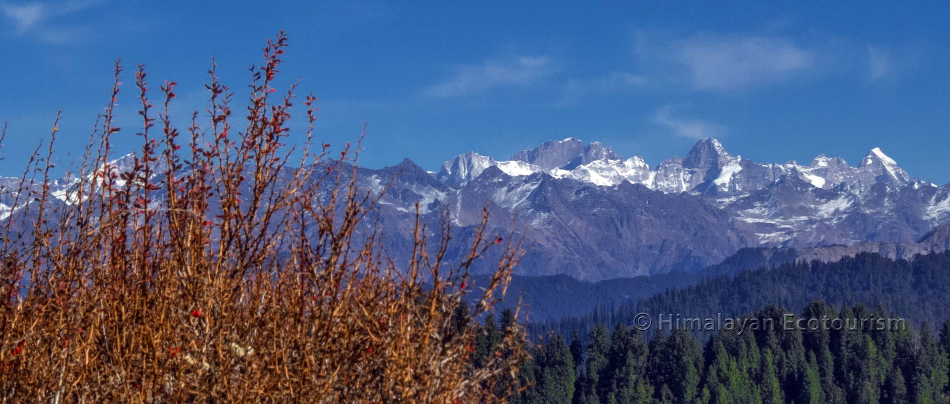 Himachal Pradesh, Inde