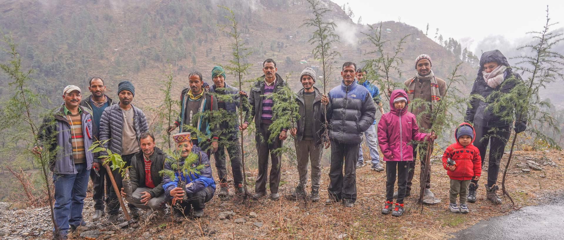 Plant trees with us in the Himalayas