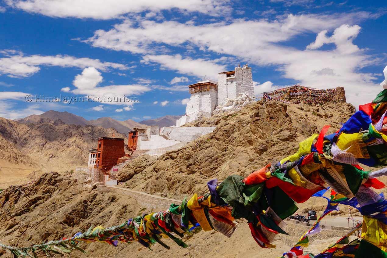 Ladakh Namgyal Tsemo