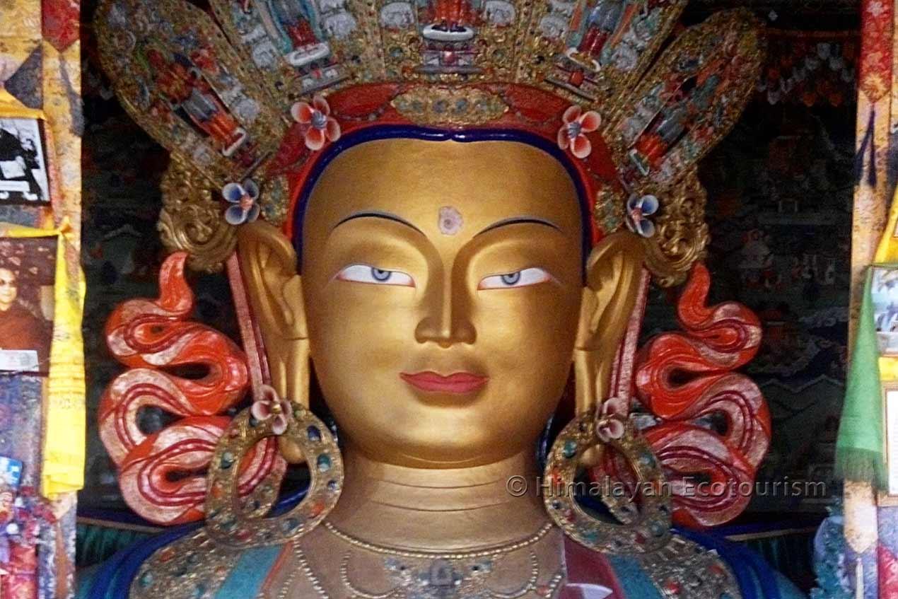 Wisdom of Ladakh