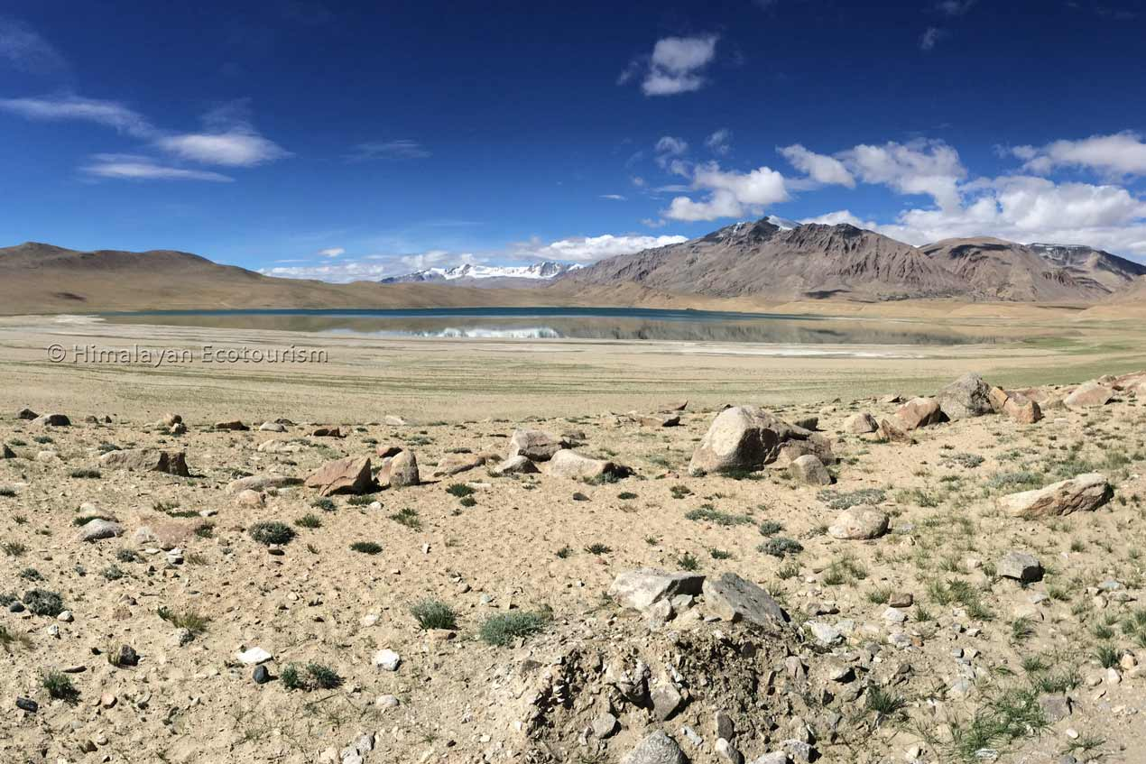 Kiagar Tso lake, Ladakh