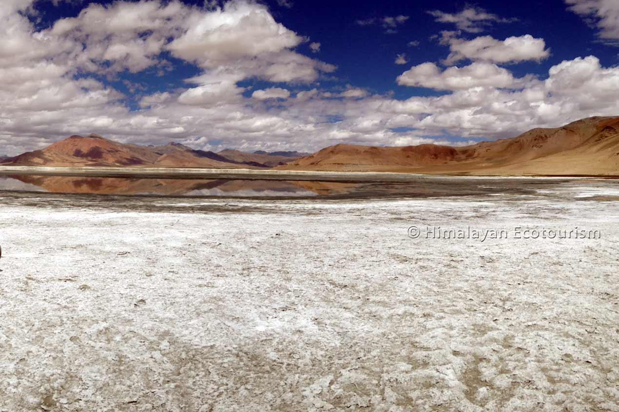 Tso Kar Ladakh