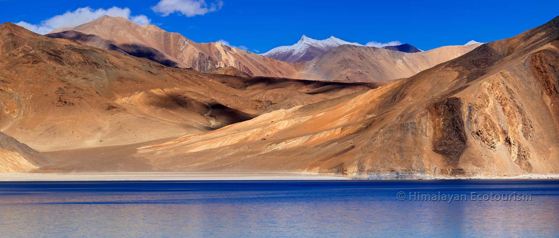 Le lac Pangong Tso, Ladakh