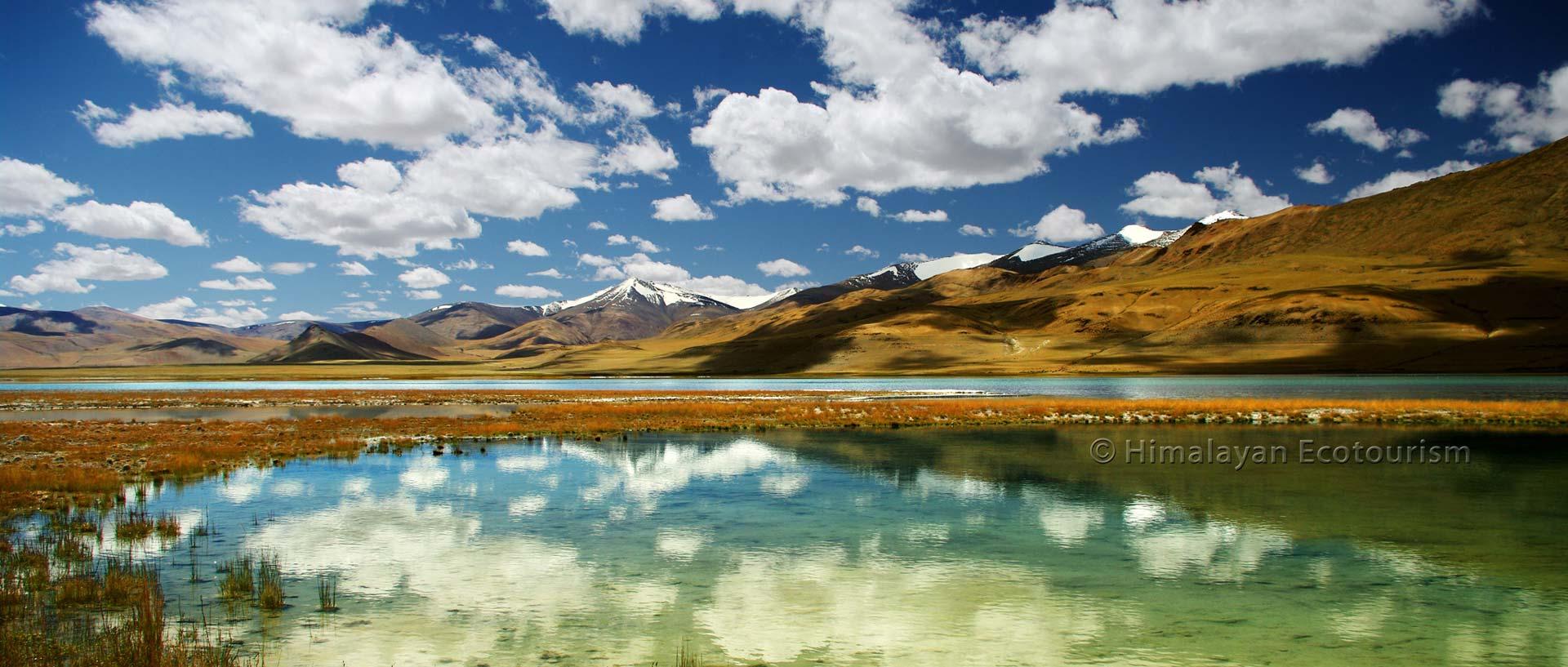 Le lac Tso Kar, Ladakh
