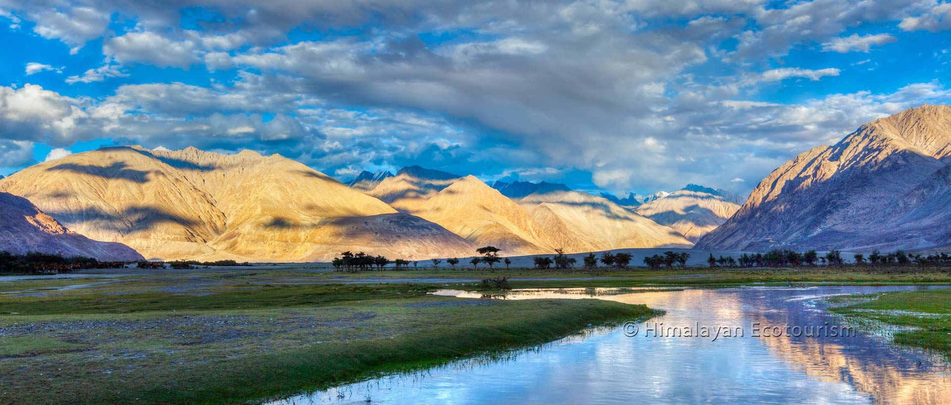 Landscape of the Nubra valley, Ladakh