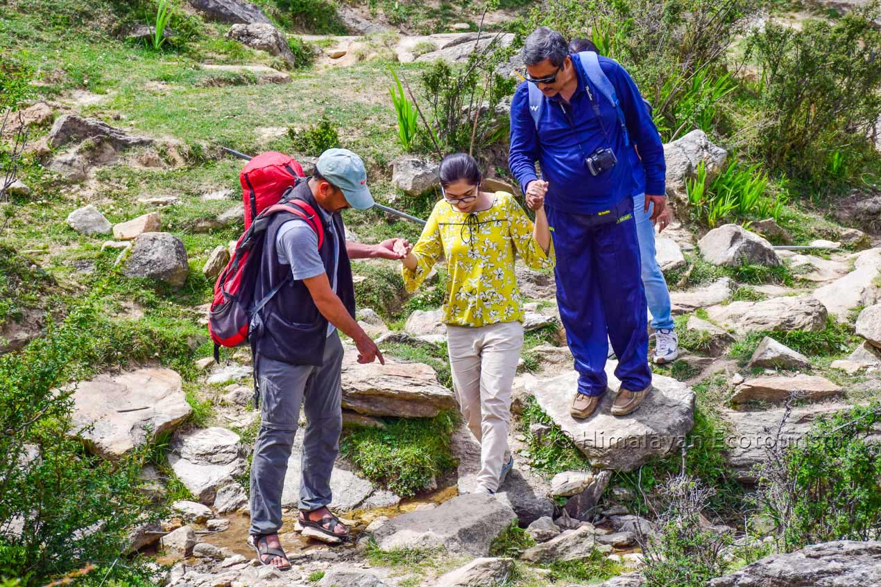 Nature therapy in the Tirthan valley, GHNP