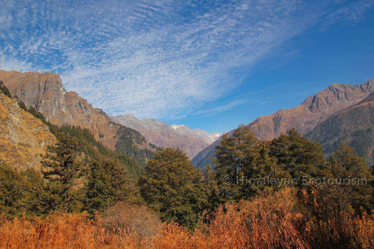 The Tirthan valley trek to Nada and Kobri in the GHNP