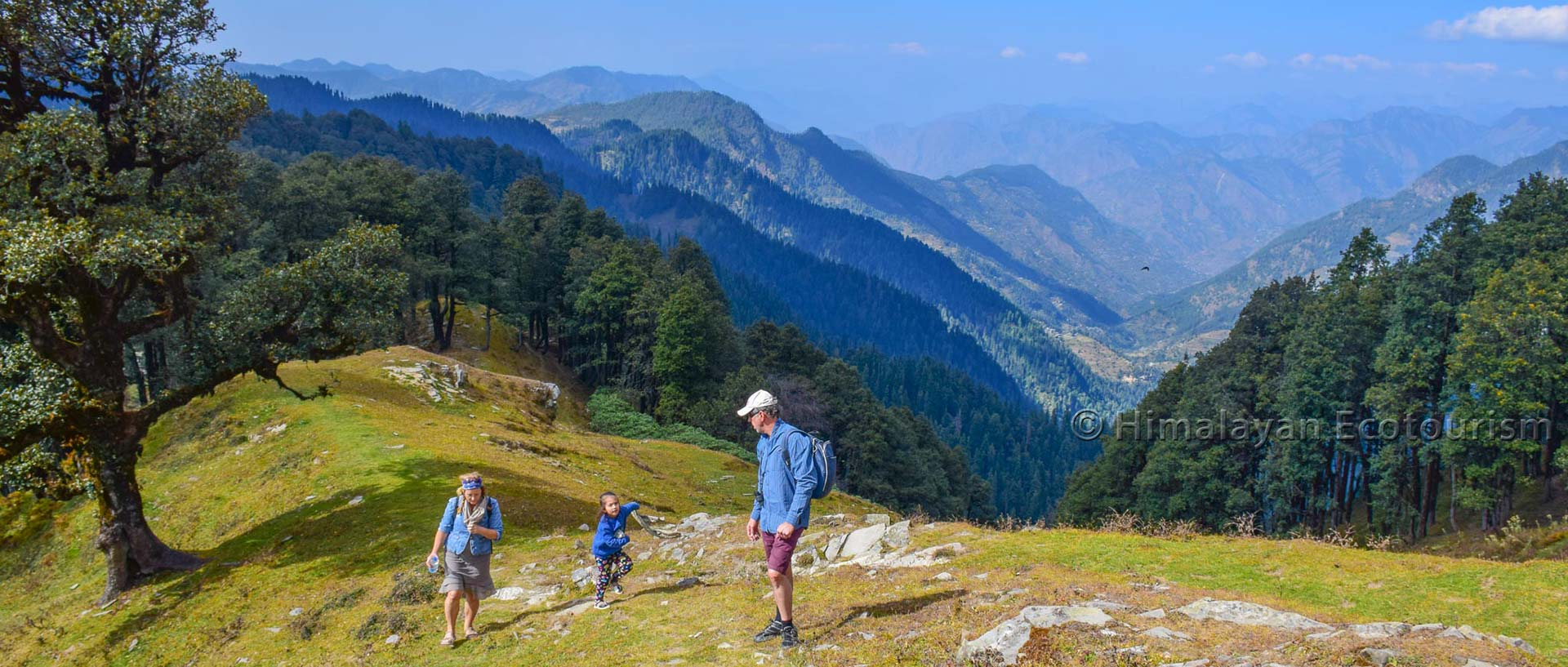 Beautiful and easy day hikes in the Tirthan valley